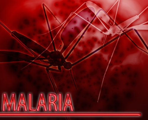The Fight Against Malaria in Africa