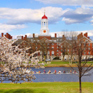 Harvard University Earned $6 Billion in Donations and Pledges