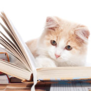 Children Read to Cats in Adorable 'Book Buddies' Program