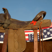 California Attorney General Files Lawsuit Against Horse Rescue/Veteran Charity