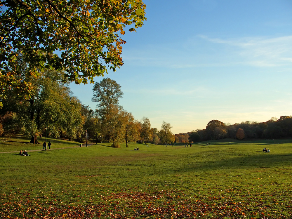 Prospect Park is one of Brooklyn's Treasures