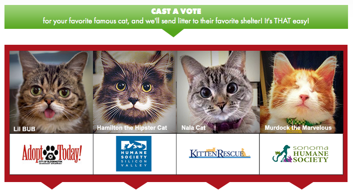 """Famous Cats to Team Up for """"Give Litter"""" Online Charity Event"""