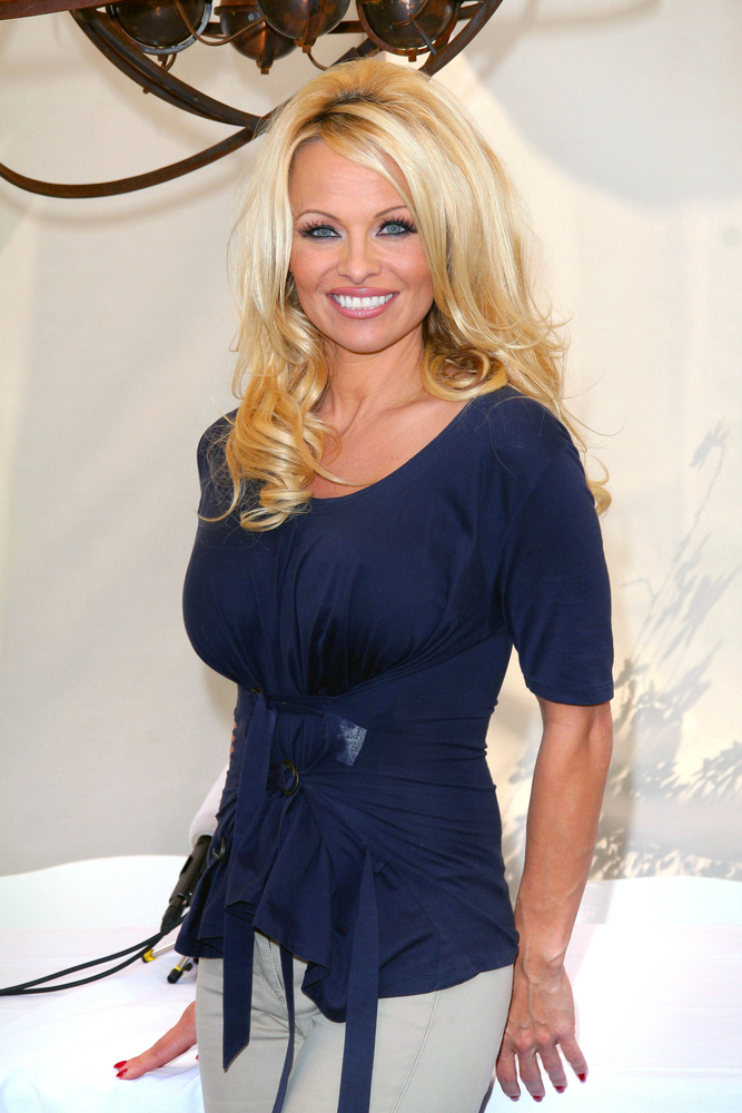 Pamela Anderson Launches Charity at Cannes