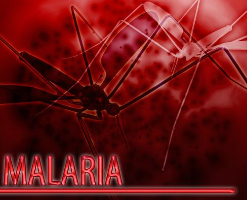 Top Malaria Prevention Initiatives