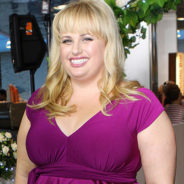 Rebel Wilson Wins Defamation Lawsuit, Will Donate Payout to Charity
