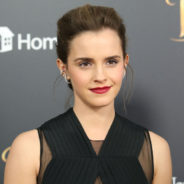 Emma Watson Makes Hefty Donation to Justice and Equality Fund