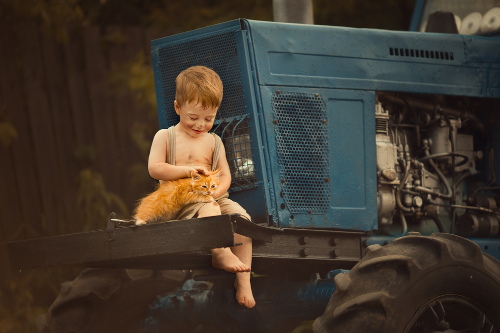 A rural boy sitting on a tractor petting a kitten.